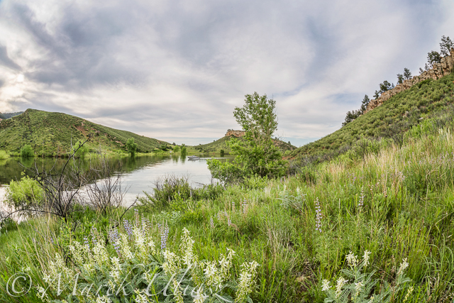 Green springtime landscape on the shores of Horsetooth Reservoir